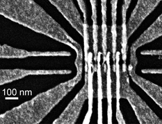 Scanning electron micrograph of the silicon QuBus