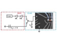 Cryogenic HBT amplifiers for Spin Qubit Readout