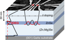 Towards Electron Spin Quantum Bits in ZnSe